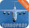 飞行模拟器  v1.22