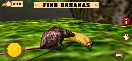母鼠模拟器2中文版游戏下载截图