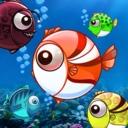 大魚吃小魚單機版