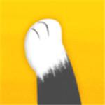 猫爪app