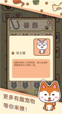 梦幻宠物店飞狗日记游戏下载