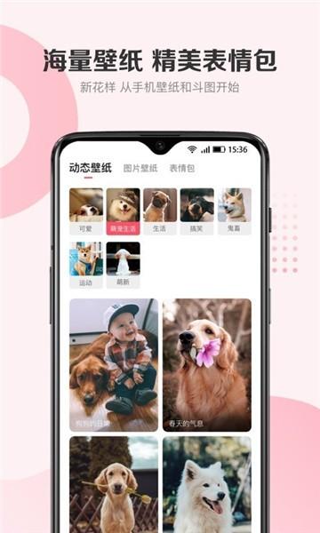 68宠物app下载官方下载