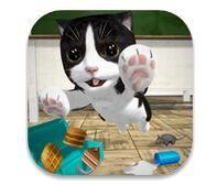 猫咪模拟器