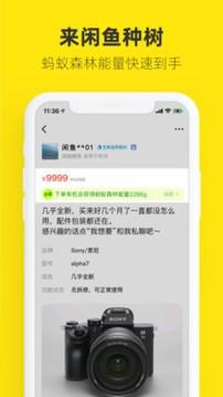闲鱼商家版app下载