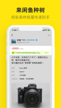 闲鱼网站二手市场官方版下载