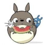 龙猫追剧app v1.0.9